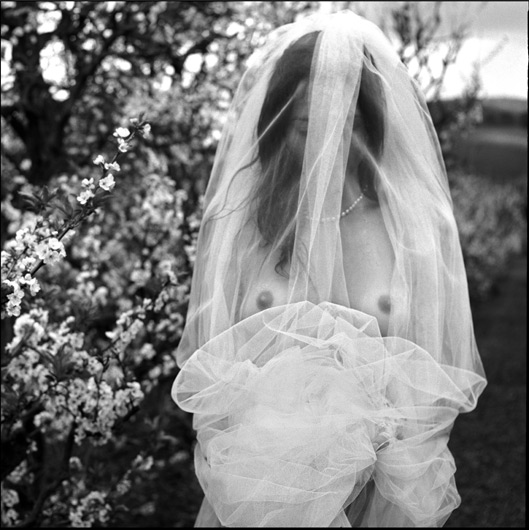 """""""Blossom Bride"""", from The Debut Girls 2008"""