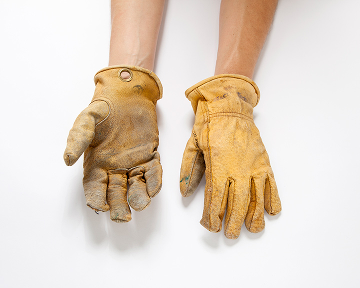 The-Collection---GLOVES---no.106---Catalogued-for-TheSofterSex